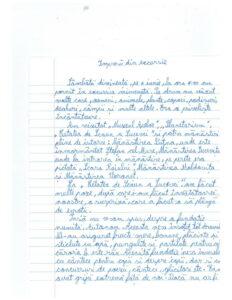 Scrisoare Alexandra pagina 1-page-001 (1)